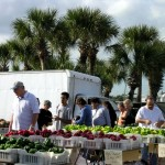Flagler Beach Farmers Market